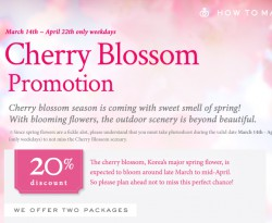 CHERRY BLOSSOM PROMOTION