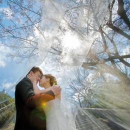 Alvin & Liyi's Pre Wedding