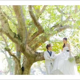 Sean + Jesslyn Pre-Wedding