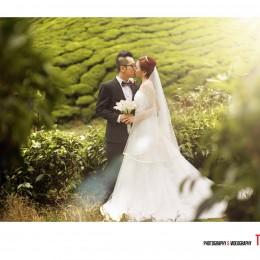 Pre-wedding Location