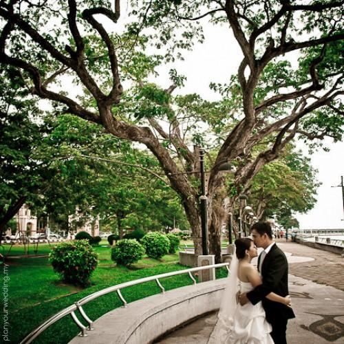 Planyourwedding your wedding ideas and inspiration elyn haur johor modern chinese wedding day muar tangkak click4loves photography5 junglespirit Images